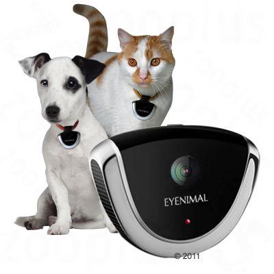 Caméra pour chien et chat Eyenimal