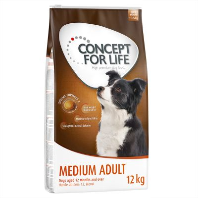 Concept for Life Medium Adult