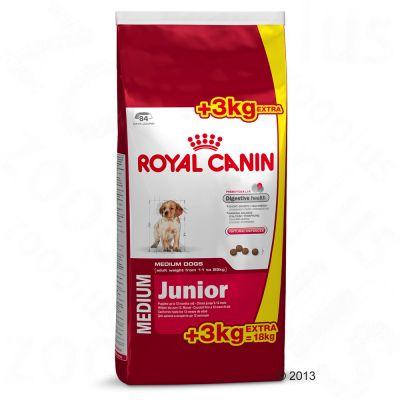 Croquettes Royal Canin Size 8 ou 15 kg + 1 ou 3 kg offerts !
