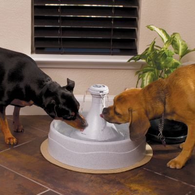 Drinkwell 360 by PetSafe