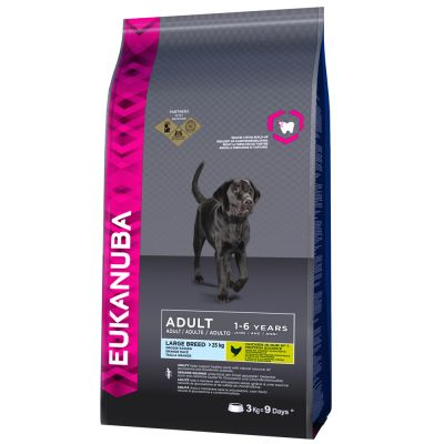 Eukanuba Adult Large Breed Chicken