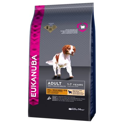 Best Organic Dry Dog Food For Small Dogs