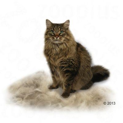 furminator deshedding tool for large cats great deals at. Black Bedroom Furniture Sets. Home Design Ideas
