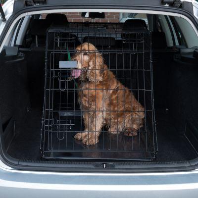 Gabbia da trasporto per cani Ruby