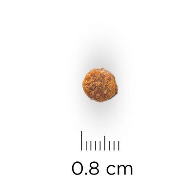 Hill´s Puppy Small & Miniature - Kip & Kalkoen