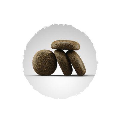 josera lachs kartoffel getreidefrei g nstig bei zooplus. Black Bedroom Furniture Sets. Home Design Ideas