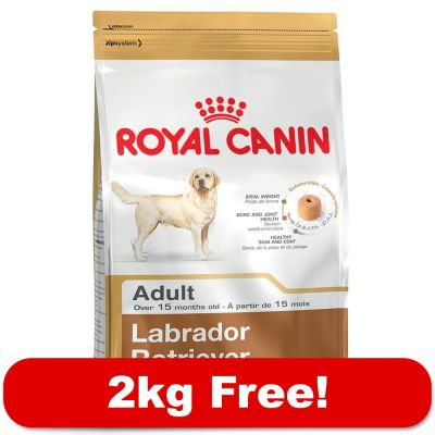 Royal Canin is one of the largest dog and cat food brands in the United States. The brand is owned by Mars Petcare, one of the largest pet food companies. Mars Petcare owns a total of 41 brands including four billion dollar pet food brands (Pedigree, Iams, Whiskas, and Royal Canin).