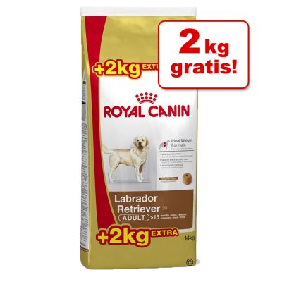 14 kg Royal Canin Breed hondenvoer - Tijdelijk 12 kg + 2 kg gratis!