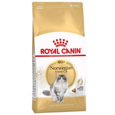10 kg Royal Canin Breed + Kratzmöbel Schlitten gratis!