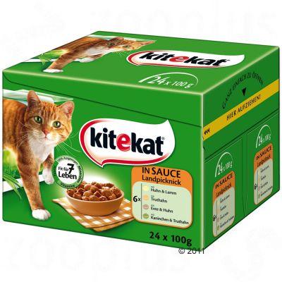 acana cat food feeding guide