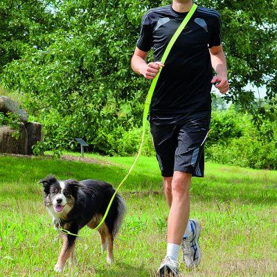 Trixie USB Flash Jogging - Laisse et harnais - zooplus