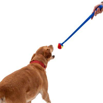 Lanceur de balles de tennis pour chien zooplus - Lanceur de balle pour chien automatique ...