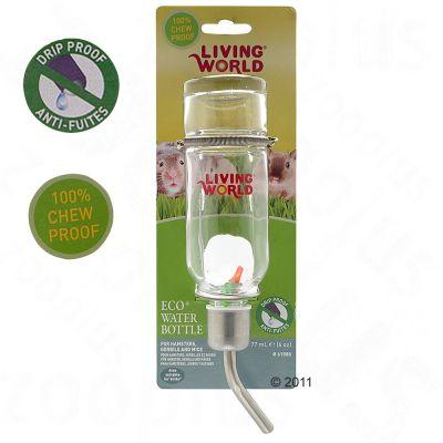 Living World Glass Water Bottle