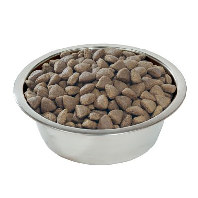 Best Dog Food For Itchy Skin Uk