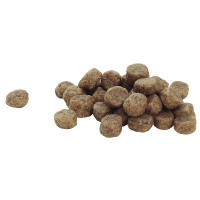 Pro Plan Small & Mini Puppy Optiderma - Zalm & Rijst