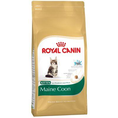Probierpreis: 400 g Royal Canin für Kitten