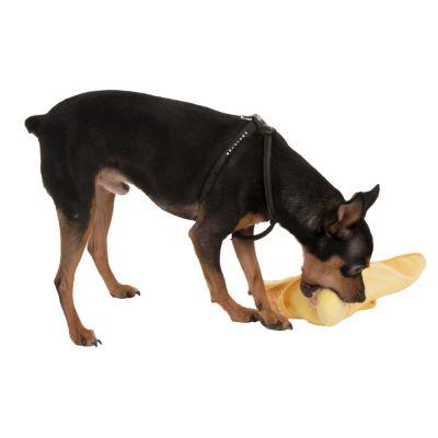 Quaxie Copertina gioco per cani coccola