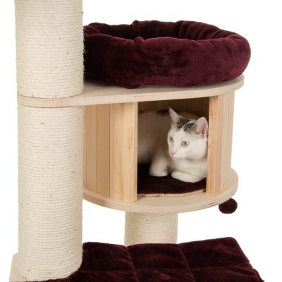 Rascador Natural Paradise XL Premium Edition para gatos