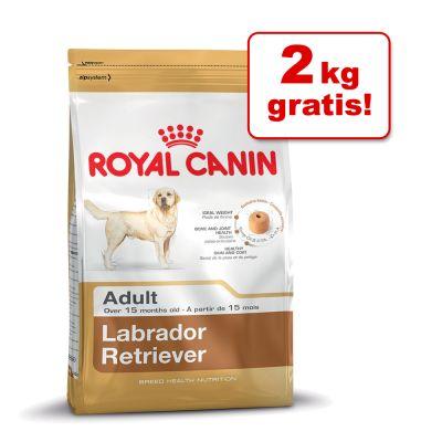 Royal Canin Breed Hundefutter im Bonusbag