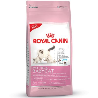 Royal Canin Kitten Starter Kit: Futter plus Zubehör