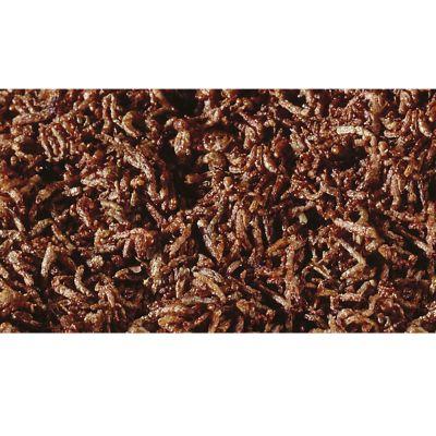SERA FD larve rosse di zanzara