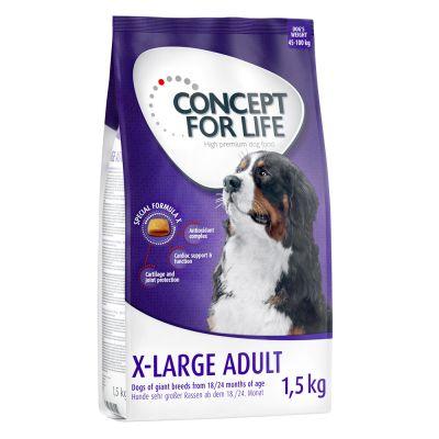 Set transition! Concept for Life X-Large - verso la vita adulta