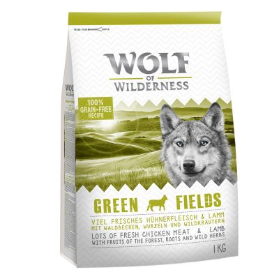 Set transition! Wolf of Wilderness Green Fields - Agnello - verso la vita adulta