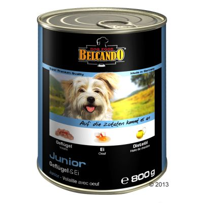 Sparpaket Belcando Super Premium 24 x 800 g