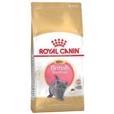 Sparpaket Royal Canin Breed Katzenfutter